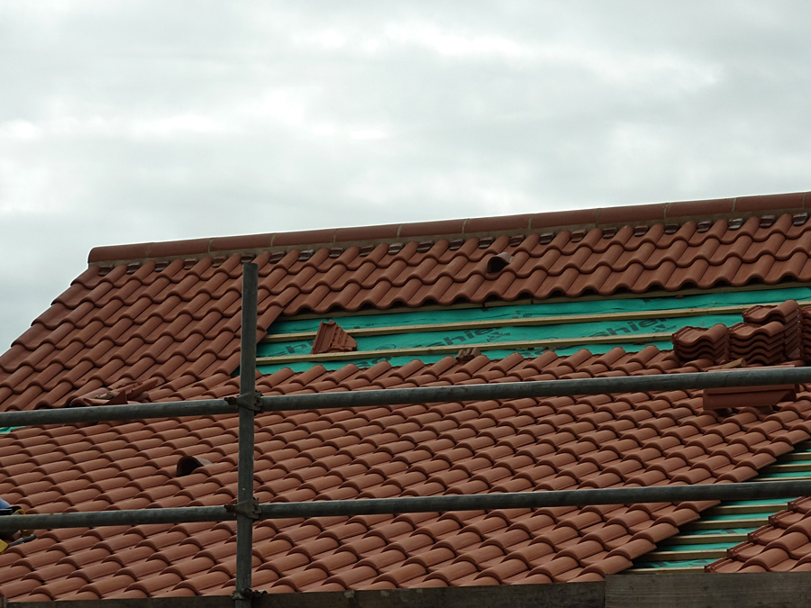 Roof tiles 7